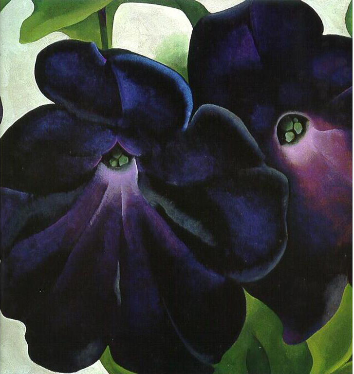 Black and Purple Petunias, Georgia O'Keefe